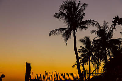 Colorful Tropical Paradise Sunset Silhouettes Poster by James BO Insogna