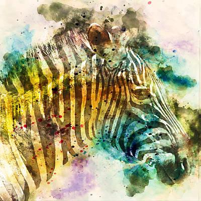 Colorful Zebra Portrait 1 - By Diana Van Poster