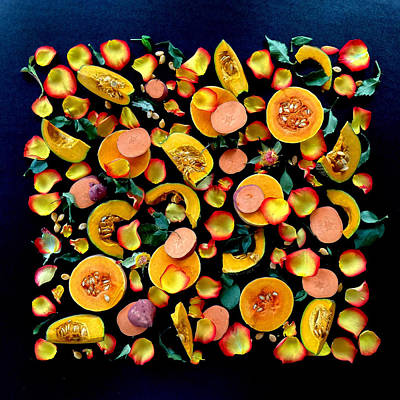 Colors Of Winter Squash Poster