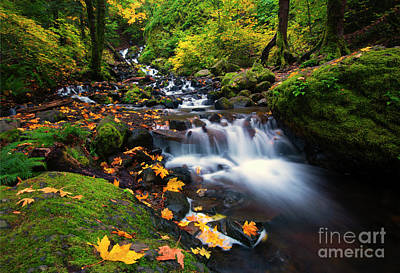 Columbia Gorge Autumn Poster by Mike Dawson