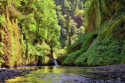 Columbia Gorge Waterfall In Summer Poster
