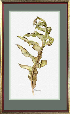 Compass Plant, Fall Poster