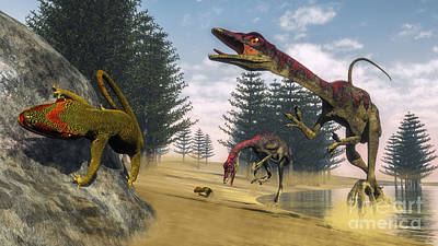 Compsognathus Dinosaur Hunting A Gecko Poster