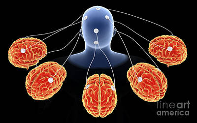 Conceptual Image Of Multi-brain Poster by Stocktrek Images