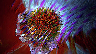 Poster featuring the photograph Coneflower by Irma BACKELANT GALLERIES