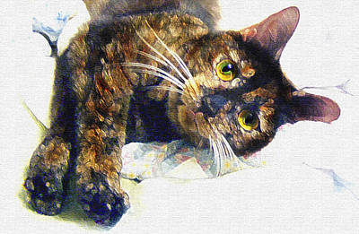 Contented Cat Poster by Jane Schnetlage