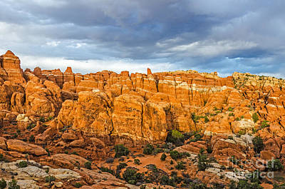 Poster featuring the photograph Contrasts In Arches National Park by Sue Smith