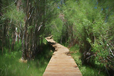Poster featuring the photograph Convict Lake Loop Trail by Donna Kennedy