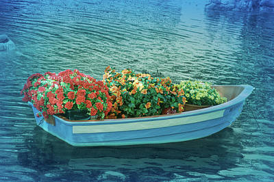 Poster featuring the photograph Cool Blue Boat Parade by Aimee L Maher Photography and Art Visit ALMGallerydotcom