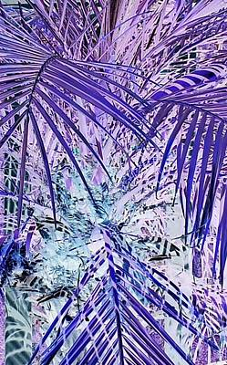 Cool Jungle Vibe Poster