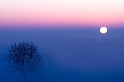 Cool Winter Sun Poster by Todd Klassy