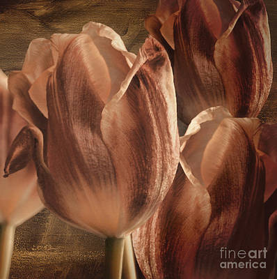 Copper Tulips Poster by Mindy Sommers