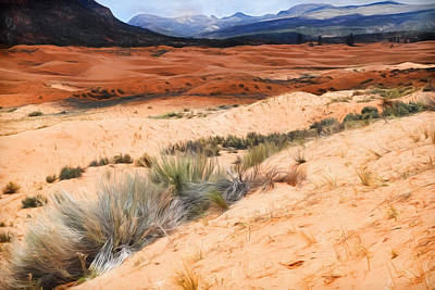 Coral Pink Sand Dunes Poster by Donna Kennedy