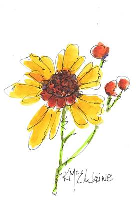 Coreopsis By Kathleen Mcelwaine Poster by Kathleen McElwaine