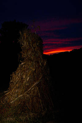 Corn Shock At Twilight Poster by Douglas Barnett