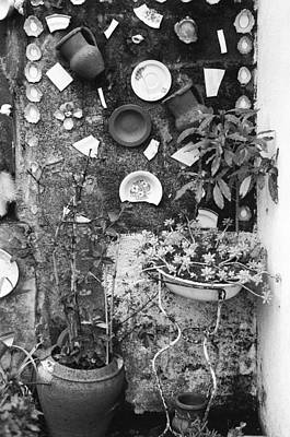 Corner Garden - Sao Miguel - Azores Poster by Henry Krauzyk