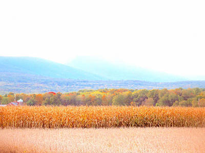 Cornfield On Bright Autumn Day 4 Poster by Lanjee Chee
