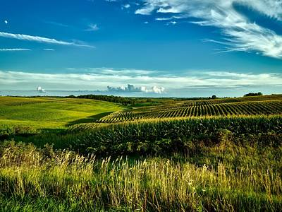 Cornfields Of Iowa Poster