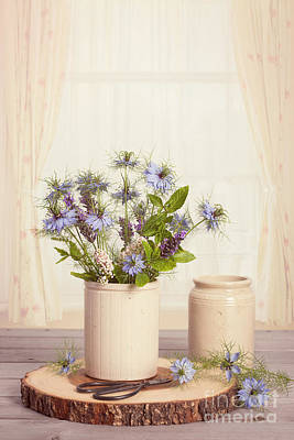 Cornflowers In Ceramic Pots Poster by Amanda Elwell