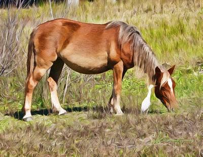 Corolla's Wild Horses Poster