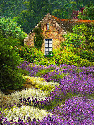 Cottage Amidst The Lavender Poster