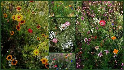 Cottage Garden Collage 2 Poster by Dorothy Berry-Lound