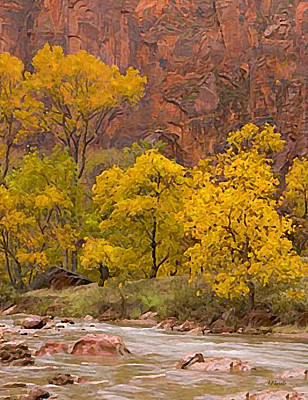 Cottonwoods Along The Virgin River At Zion Poster