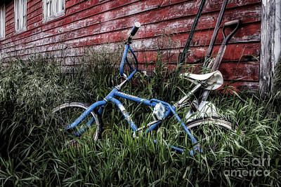 Poster featuring the photograph Country Bicycle by Brad Allen Fine Art