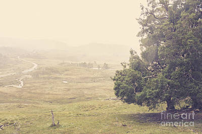 Country Farm Wilderness. Rural Australia Landscape Poster by Jorgo Photography - Wall Art Gallery