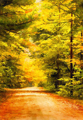 Country Road In Autumn Digital Art Poster