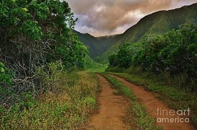 Country Road Kalaupapa, Molokai Poster by Craig Wood