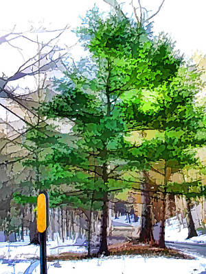 Country Road With Pine Trees 4 Poster by Lanjee Chee