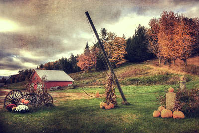 Country Scene In Autumn Poster by Joann Vitali