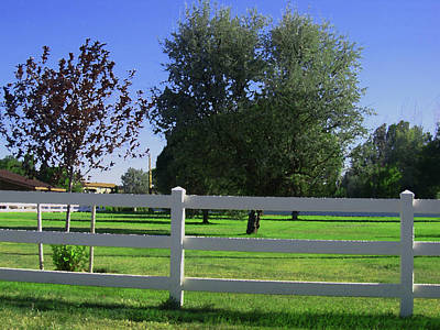 Poster featuring the photograph Country Yard by Tammy Sutherland