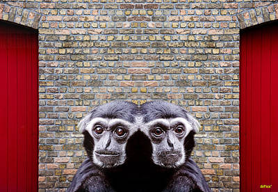 Couple Of Fun Chimps Poster by KJ DePace