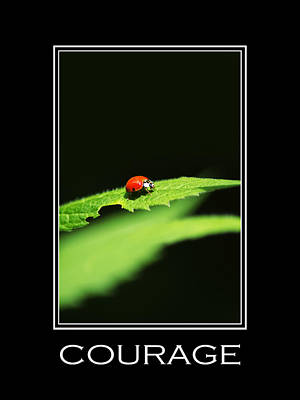 Courage Inspirational Motivational Poster Art Poster by Christina Rollo