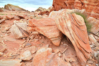 Poster featuring the photograph Cove Of Sandstone Shapes In Valley Of Fire by Ray Mathis