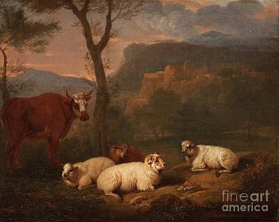 Cow And Sheep Resting Poster