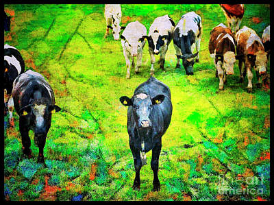 Poster featuring the photograph Cow Patch by Craig J Satterlee