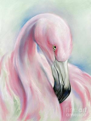 Coy Flamingo Poster