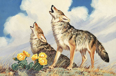 Coyotes Howl To The Setting Sun Poster by Walter A. Weber
