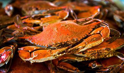 Crab Boil Poster by Karen Wiles