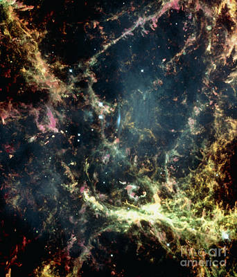 Crab Nebula Poster by Space Telescope Science Institute / NASA