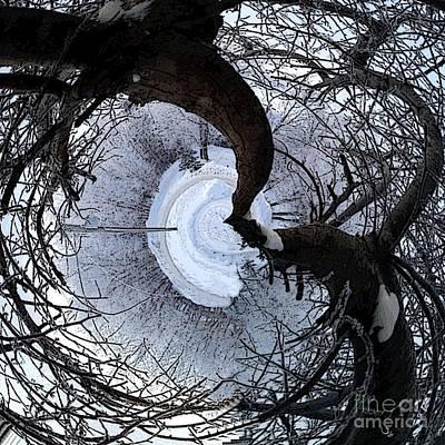 Crabapple Tree Poster