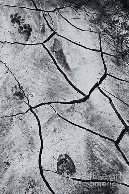 Cracks And Tracks Poster