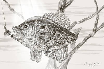 Crappie Time Poster