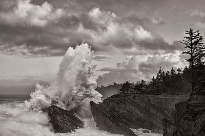 Crashing Waves At Shore Acres Poster