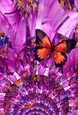 Crazy Flower Butterfly Poster
