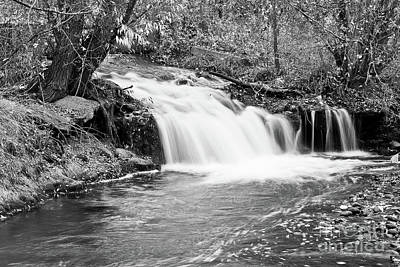 Creek Merge Waterfall In Black And White Poster