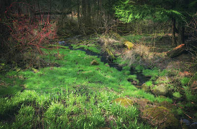 Creek - Spring At Retzer Nature Center Poster by Jennifer Rondinelli Reilly - Fine Art Photography